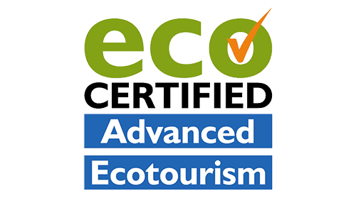 Eco Certified - Australia Whale Experience