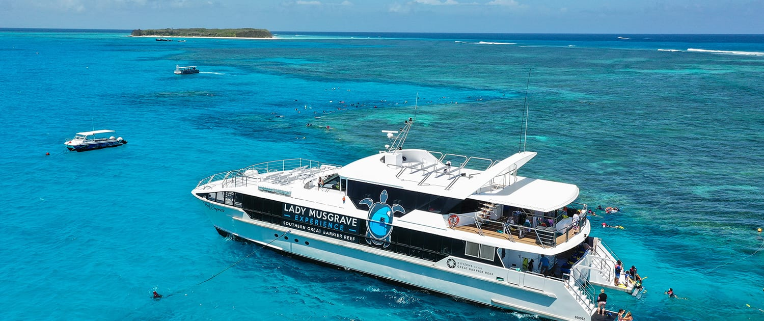 Reef Empress Whale Watching Tours - Great Barrier Reef Tours, Whale Watching Experience Bundaberg
